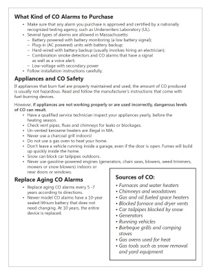 CO safety english page 2